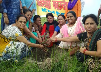 BETIYA FOUNDATION - PLANTATION